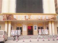 中影阜阳大戏院影城的图标